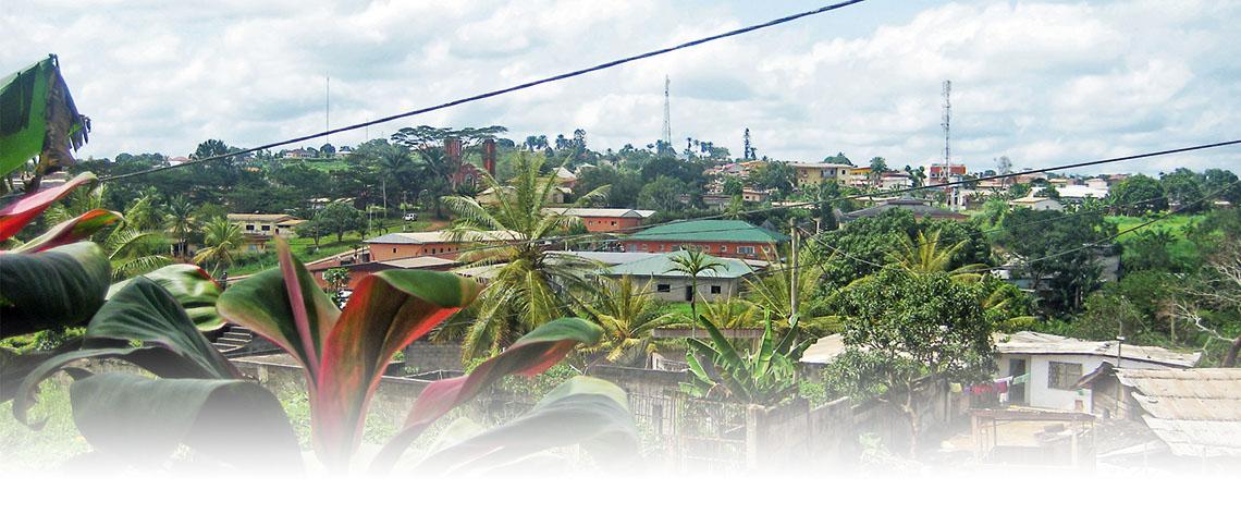 Häuser zwischen Palmen, darüber der wolkige, helle Himmel. Eines der Häuser hat ein türkises Dach, mehrere rötliche Mauern.