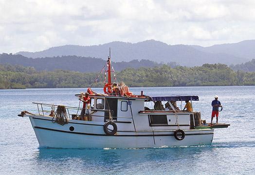 Vor einer dichtbewachsenen Küste fährt ein weißes Boot. Darauf stehen zwei Männer, weitere Leute sitzen unter einer Plane.