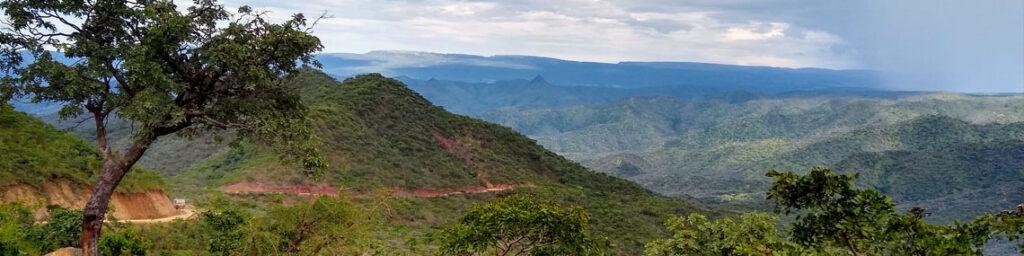 Hügelig-bergige Landschaft, grün überwachsen. Zum Horizont hin wirkt sie bläulicher. Links vorne im Bild ein Laubbaum.